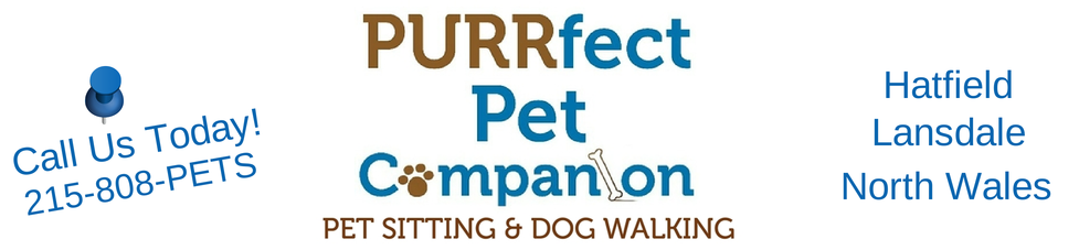 Reliable Pet Sitting in Hatfield PA by PURRfect Pet Companion